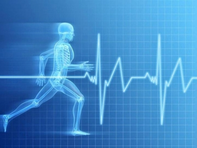 Keep your HEART-LINE going: Heart-rate based training.